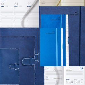 Blue 2020 Diaries